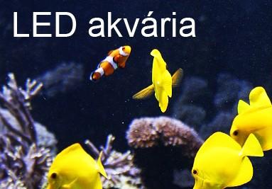 LED akvária